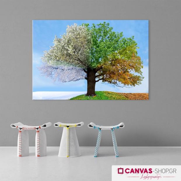 Δέντρο 4 εποχές, πίνακας σε καμβά