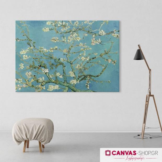 Vincent van Gogh: Ανθισμένη Αμυγδαλιά, πίνακας σε καμβά