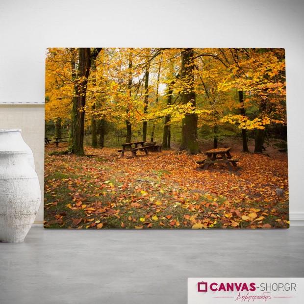 Φθινοπωρινό Τοπίο , πίνακας σε καμβά
