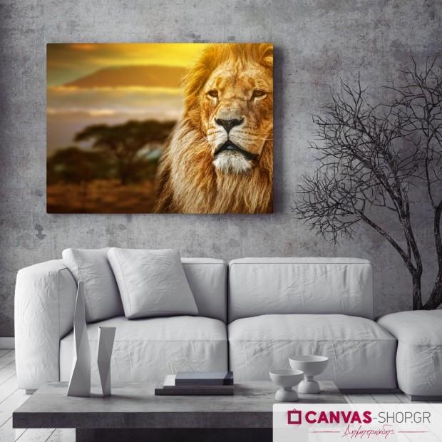 Λιοντάρι, πίνακας σε καμβά